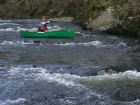 Steve Gorman on the Lune
