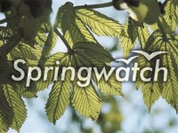Springwatch weigh in on the ruined childhood debate